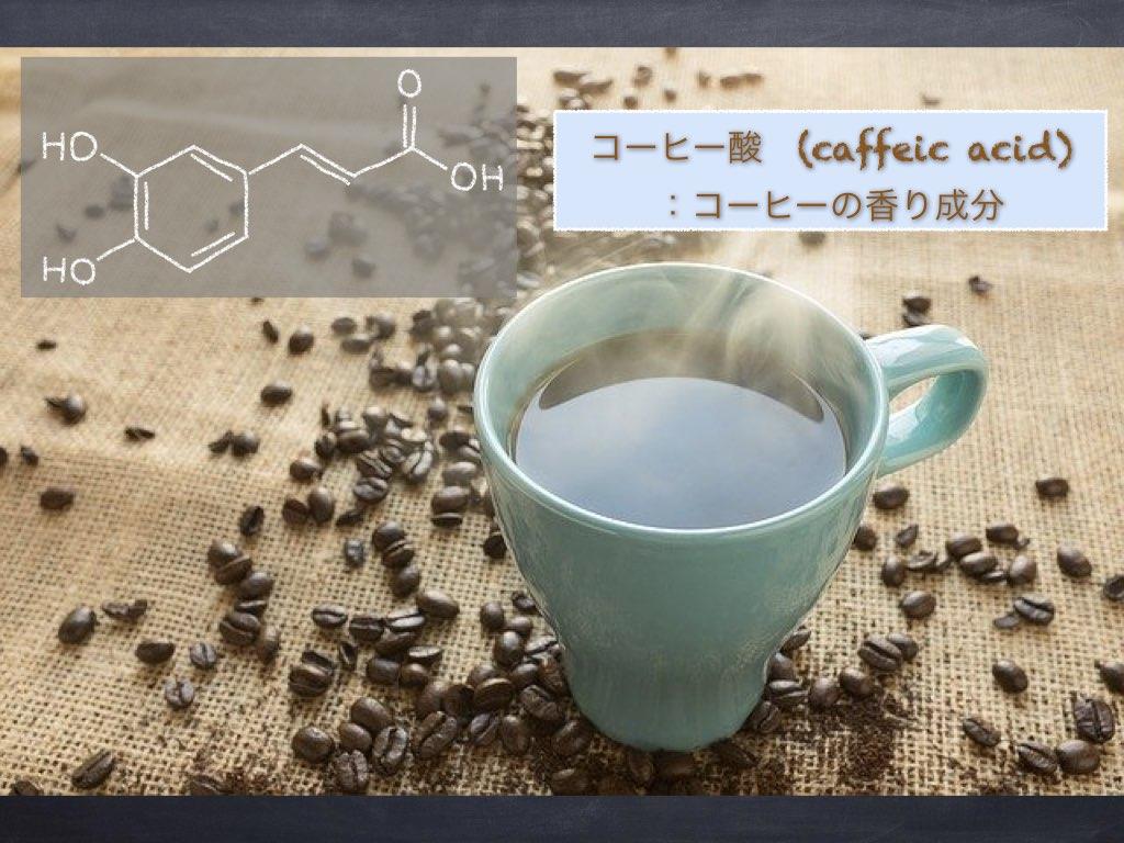 コーヒー酸-タイトル