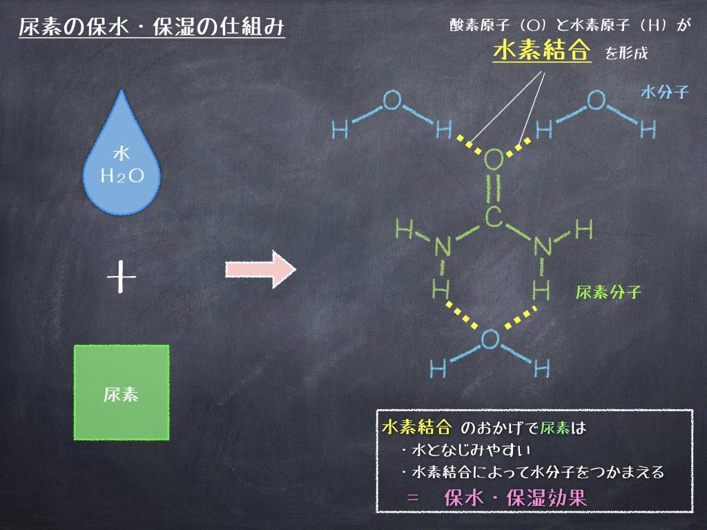 尿素の保水・保湿の仕組み
